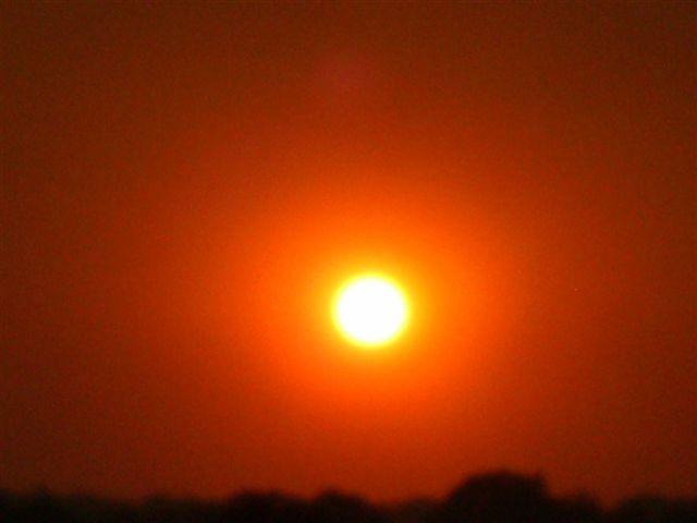 Sunset on Ponderosa Views