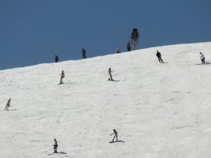 ski nm